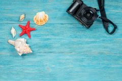 Sea creatures and photo camera over wooden planks. Summer memories concept Royalty Free Stock Image