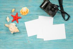 Sea creatures and photo camera stock photography