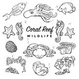 Sea creatures set. BW Royalty Free Stock Photography