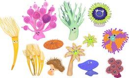 Sea creatures Stock Photo