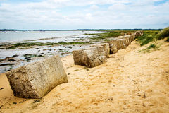 Sea Defence on the tidal river and groynes Stock Image