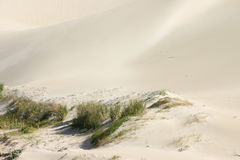 Sea Dune 2. Sand dune bordered with grass royalty free stock photos