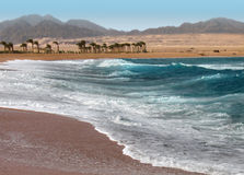 Sea in egypt ,  Nabk bay Royalty Free Stock Photos