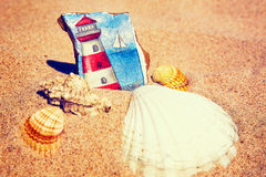 Sea elements on the sand Royalty Free Stock Images