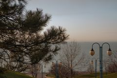 Sea embankment with pines and lights. View of the sea embankment through the pine branches royalty free stock image