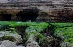 Sea erosion Stock Photography