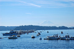 Sea Fair and Mt Rainier, Seattle Royalty Free Stock Photography