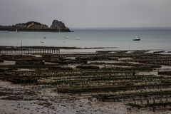 Sea farm for the production of oysters on the shore of the Kelst Sea in Normandy royalty free stock photography