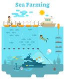 Sea Farming illustration. Sea Farming - Aquaculture concept illustration with growing fish and other sea products underwater Stock Photos