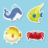 Sea fauna cartoon Stock Photo
