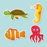 Sea fauna cartoon Royalty Free Stock Image