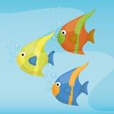 Sea fauna cartoon Royalty Free Stock Photos
