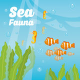 Sea fauna cartoon. Vector illustration graphic design Royalty Free Stock Photography