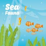 Sea fauna cartoon Royalty Free Stock Photography