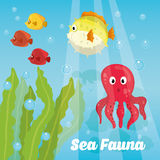 Sea fauna cartoon Stock Image