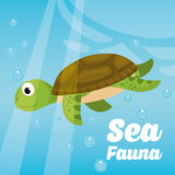 Sea fauna cartoon. Vector illustration graphic design Royalty Free Stock Images