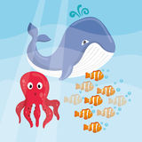Sea Fauna graphic design, vector illustration Stock Photography