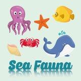 Sea Fauna graphic design, vector illustration Stock Photo