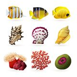 Sea Fauna Icons. Sea fauna decorative colored icons set with fishes shells and corals isolated  vector illustration Royalty Free Stock Images