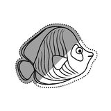 Sea fish animal. Icon  illustration graphic design Stock Photo