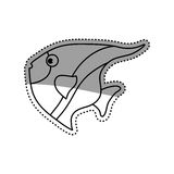 Sea fish animal. Icon  illustration graphic design Royalty Free Stock Photography