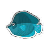 Sea fish animal. Icon  illustration graphic design Royalty Free Stock Photos