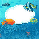 Sea fish background. Sea background with fishes with white area for your text Stock Image