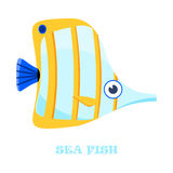 Sea Fish color vector illustration. Sea Fish color vector illustration on white background Stock Photos