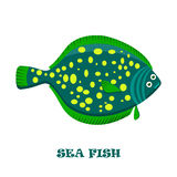 Sea Fish color vector illustration. Royalty Free Stock Photos