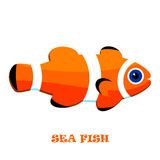 Sea Fish color vector illustration. Royalty Free Stock Photo
