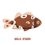 Sea Fish color vector illustration. Stock Photo