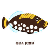 Sea Fish color vector illustration. Stock Photos