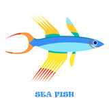 Sea Fish color vector illustration. Stock Images