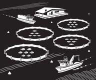 Sea fish farm - vector illustration. Industrial sea fish farm - vector illustration Stock Image