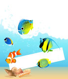 Sea fish frame Stock Photos