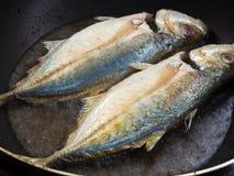 Sea fish frying in a Pan Royalty Free Stock Photos