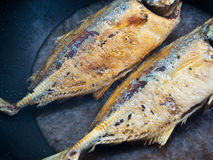 Sea fish frying in a Pan Royalty Free Stock Photography