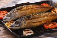Sea fish grilled mackerel and vegetables closeup. Horizontal Stock Photos