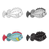 Sea fish icon in cartoon style isolated on white background. Sea animals symbol stock vector illustration. Sea fish icon in cartoon design isolated on white Royalty Free Stock Photos