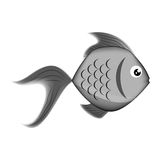 Sea fish icon. Over white background. vector illustration Royalty Free Stock Photo