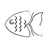 Sea fish icon. Over white background. vector illustration Stock Image