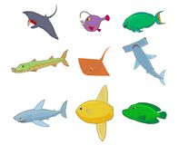 Sea fish icon set, cartoon style. Sea fish icon set. Cartoon set of sea fish vector icons for web design isolated on white background Vector Illustration