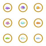 Sea fish icons set, cartoon style Royalty Free Stock Photos