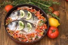 Sea fish. Stock Photos