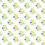 Sea fish seamless pattern. Color sea fish seamless pattern Stock Photo