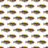 Sea fish seamless pattern. Color sea fish seamless pattern Royalty Free Stock Photo