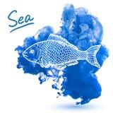 Sea fish. On a watercolor background. Original hand drawn illustration Stock Photos