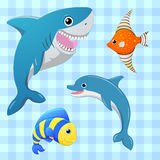 Sea fishes set. Vector fish. Cartoon cute character.  . Hand draw illustration. Stock Images