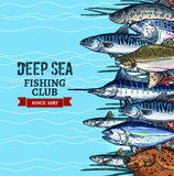 Sea fishing club poster design with fish sketches Stock Image