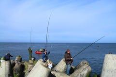 Sea fishing - the fisherman removes the caught sprat Royalty Free Stock Photo